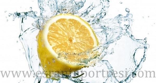 2 limon zararları_mini