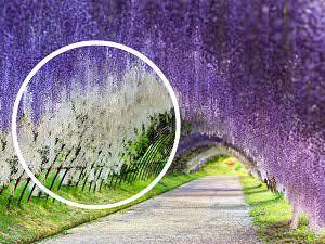 güzel yerler ön_mini_mini_mini