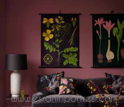 6 duvar boyasi rengi ev is yeri renk secimi_mini